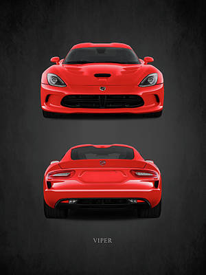 Viper Print by Mark Rogan
