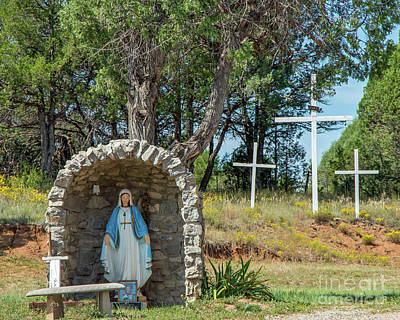 Photograph - Virgin Mary Shrine by Steve Whalen