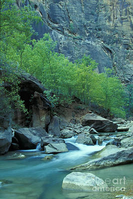 Photograph - Virgin River In Zion 2 by Stan and Anne Foster
