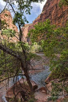 Photograph - Virgin River View by Peggy Hughes