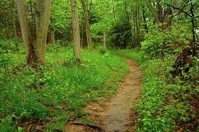 Photograph - Virginia Appalachian Trail Here I Come by Raymond Salani III