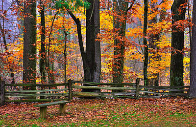 Photograph - Virginia Country Roads - A Seat With A View - Autumn Colorfest No. 1 Near Mabry Mill - Floyd County by Michael Mazaika