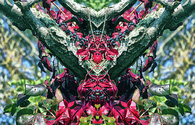 Photograph - Virginia Creeper 2 Pareidolia by Constantine Gregory