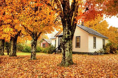 Photograph - Virginia Creeper Autumn by Dale R Carlson