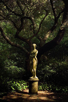 Photograph - Virginia Dare Statue 2008 by Greg Reed