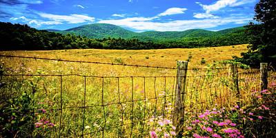 Virginia Fields Of Green Art Print by David Hahn