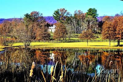 Photograph - Virginia Scene by Merle Grenz