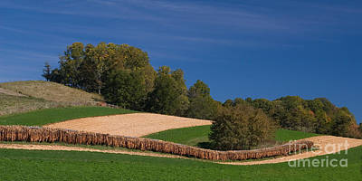 Photograph - Virginia Tobacco Farm by T Lowry Wilson