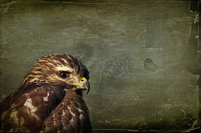 Solitude Photograph - Visions Of Solitude by Evelina Kremsdorf