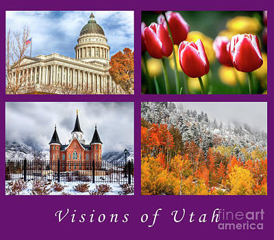 Photograph - Visions Of Utah by David Millenheft
