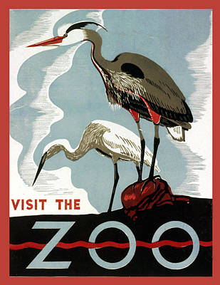 Visit The Zoo Egrets  Art Print by Unknow