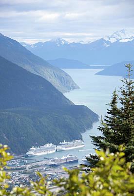 Photograph - Visiting Alaska by Ramunas Bruzas