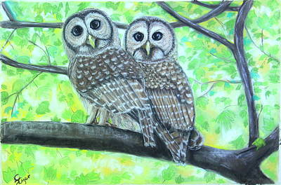 Wall Art - Pastel - Visiting Barred Owls by Carol Iyer