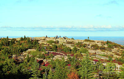 Photograph - Visiting Cadillac Mountain by Patti Whitten