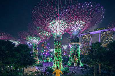 Photograph - Visiting Singapore by Evgeny Vasenev