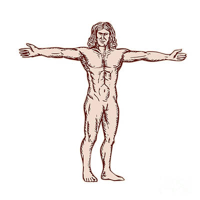 Vitruvian Man Arms Spread Front Etching Art Print by Aloysius Patrimonio