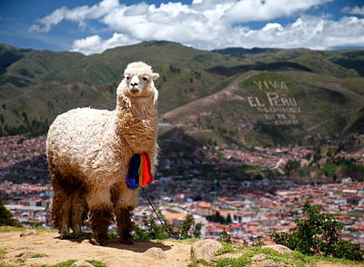 South Photograph - Viva El Peru by Kareem Farooq