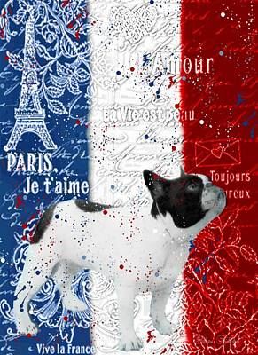 Photograph - Vive Le Frenchie by Barbara Chichester