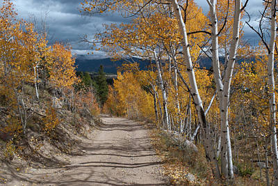 Photograph - Vivid Autumn Colors Of Colorado by Cascade Colors