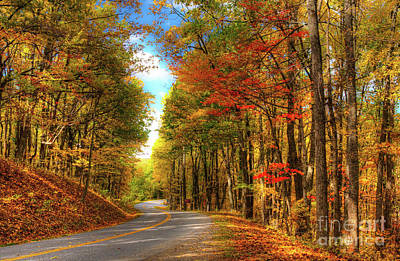 Photograph - Vivid Autumn In The Blue Ridge Mountains by Dan Carmichael