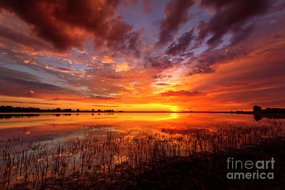 Photograph - Vivid Colorful Sunrise Or Sunset Reflecting In A Lake by Ronda Kimbrow