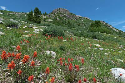 Photograph - Vivid Orange And Blue Colorado Landscape by Cascade Colors