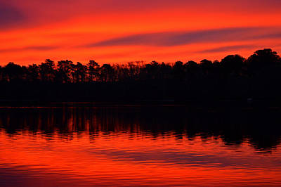 Photograph - Vivid Winter Sunrise By Dianne Cowen by Dianne Cowen