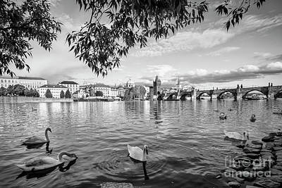 Photograph - Vltava View by Dennis Hedberg