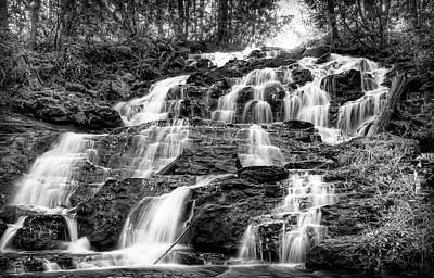 Photograph - Vogel State Park Waterfall by Anna Rumiantseva