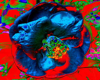 Digital Art - Volcanic Blossom by Larry Beat