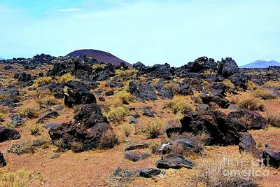 Photograph - Volcanic Field by Joe Lach