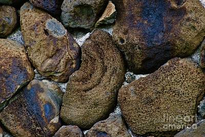 Photograph - Volcanic Rock Wall by Craig Wood