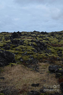 Photograph - Volcanic Rock With Lush Green Moss In A Lava Field  by DejaVu Designs