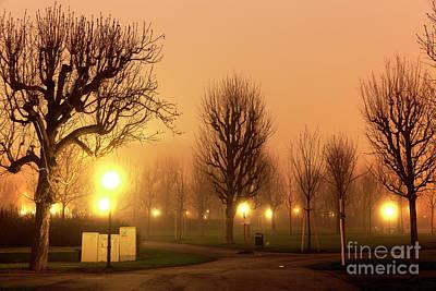 Photograph - Volksgarten Fog At Night by John Rizzuto