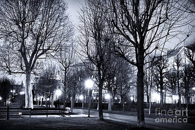 Photograph - Volksgarten Night Lights by John Rizzuto