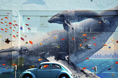 Photograph - Volkswagen Beetle And Humpback Whale by Larry Butterworth