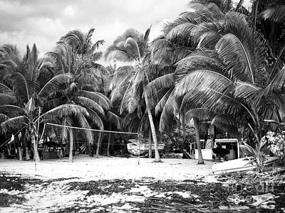 Photograph - Volleyball And Palms by John Rizzuto