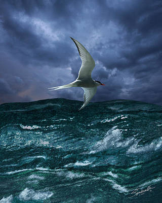 Digital Art - Voyage Of The Arctic Tern by IM Spadecaller