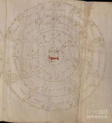 Cosmological Drawing - Voynich Manuscript Astro Cancer by Rick Bures