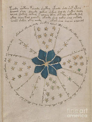 Drawing - Voynich Manuscript Astro Rosette 2 by Rick Bures