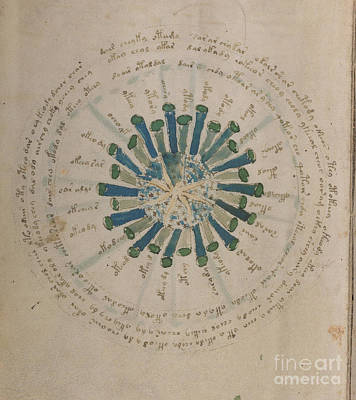 Drawing - Voynich Manuscript Astro Star Central 2 by Rick Bures