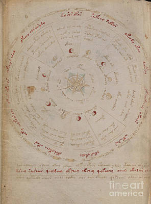 Drawing - Voynich Manuscript Astro Star Central 4 by Rick Bures