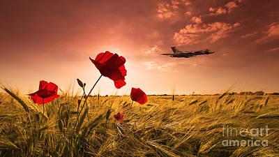 Poppy Digital Art - Vulcan Poppy Sunset by J Biggadike