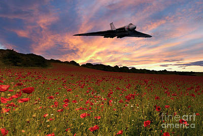 Poppies Field Digital Art - Vulcans End by J Biggadike