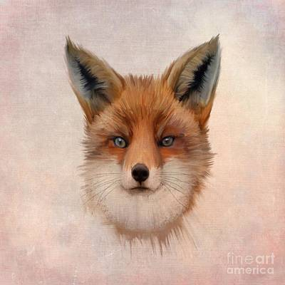 Foxes Drawing - Vulpes Vulpes by John Edwards