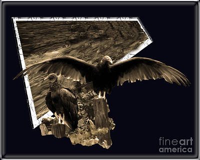 Photograph - Vulture 3d by Donna Brown