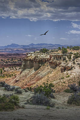 Photograph - Vulture Flying Above The Desert by Randall Nyhof