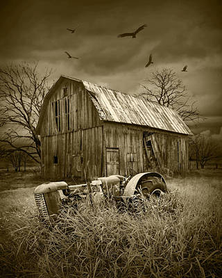 Vultures Circling The Old Barn Art Print by Randall Nyhof