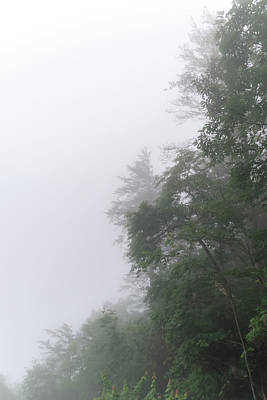 Photograph - Foggy Morning In North Georgia Mountains 2 by Andrea Anderegg