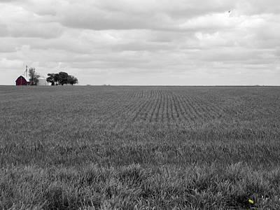 Photograph - W Field II by Dylan Punke